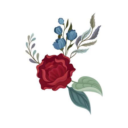 Dark red rose with leaves. Vector illustration on a white background.