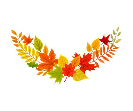 Arc of autumn leaves. Vector illustration on a white background.