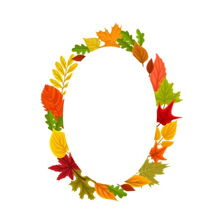 Orange oval from the leaves. Vector illustration on a white background. Stock Illustratie