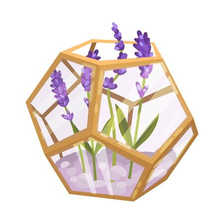 Lavender in a glass polygon. Vector illustration on a white background.