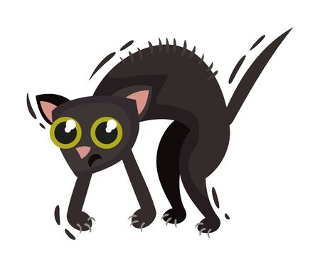 Scared black cat. Vector illustration on a white background. 向量圖像