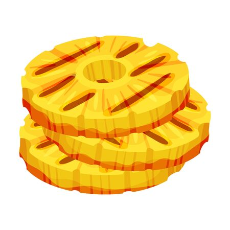 Round slices of peeled pineapple. Vector illustration on a white background.