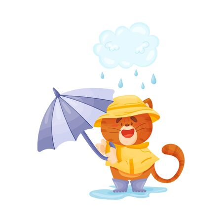 Cute tiger in a raincoat and with a gulet umbrella walks in the rain. Vector illustration. Illustration