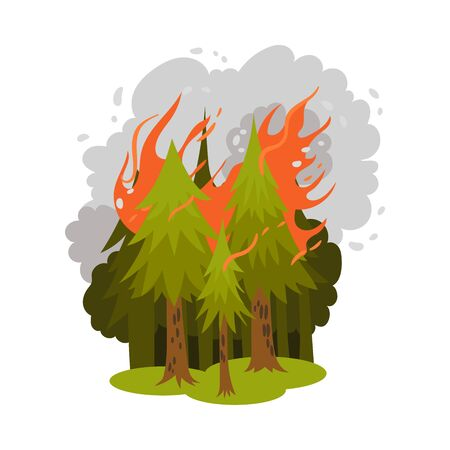 Coniferous forest burn. Vector illustration on a white background.