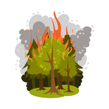 Fire in the forest. Vector illustration on a white background. 일러스트