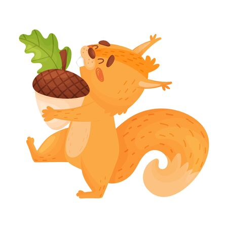 Funny Squirrel Carrying A Nut Vector Illustration On White Background.