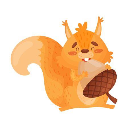 Vector Illustration Of Orange Squirrel Eating A Big Nut. Çizim