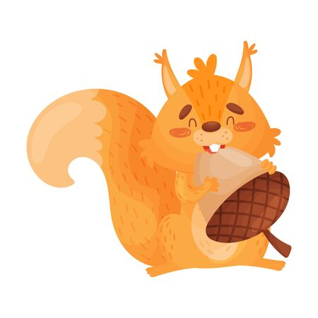 Vector Illustration Of Orange Squirrel Eating A Big Nut.  イラスト・ベクター素材