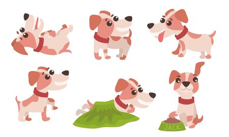 Vector Illustration Set With Jack Russell Terrier Daily Activity Isolated On White Background 일러스트