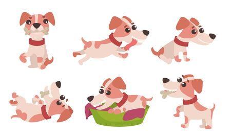 Flat Illustrations Characters Set With Funny Jack Russell Terrier Daily Activity Illustration