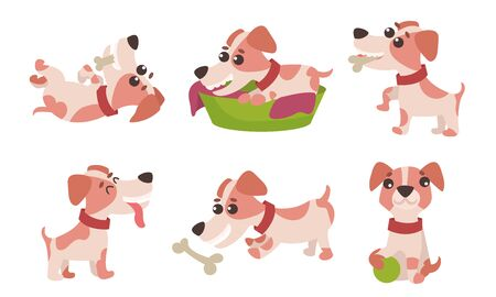 Vector Illustrations Characters Set With Cute Jack Russell Terrier Daily Activity