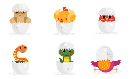 Cute New Born Animals In Eggs Vector Illustration Set