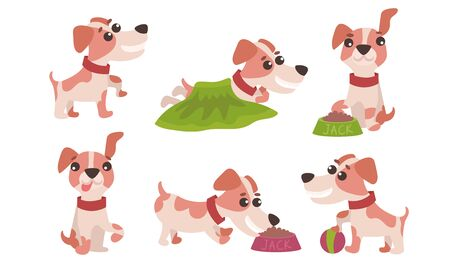 Flat Vector Illustration Set With Jack Russell Terrier Daily Activity