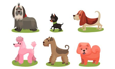 Vector Illustration Concept With Dogs Breed Isolated On White Background