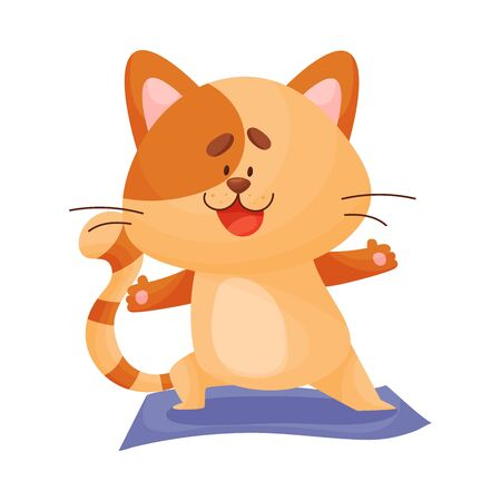Cartoon cat yogi crouched on one leg. Vector illustration.