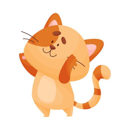 Cartoon cat yogi stands raising his hands up. Vector illustration.