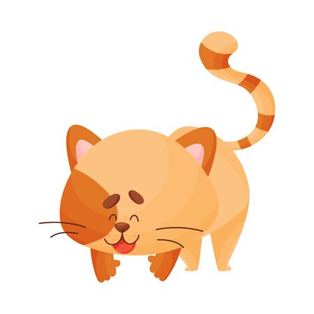Cartoon cat yogi on all fours. Vector illustration.