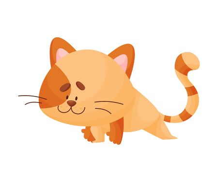 Cute cartoon orange kitten pushed one bent leg forward and straightened the other from behind. Asana Yoga. Vector illustration.