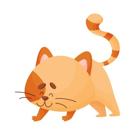 Cute cartoon orange kitten stands on four legs with its back arched up. Asana Yoga. Vector illustration. Ilustração