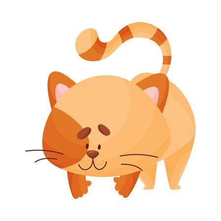 Cute cartoon orange kitten stands on four legs and looks down. Asana Yoga. Vector illustration. Ilustração