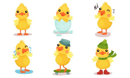 Little cute duckling rides on a skateboard, in a winter hat and scarf, cries, greets, stands and hatches from an egg. Vector illustration.