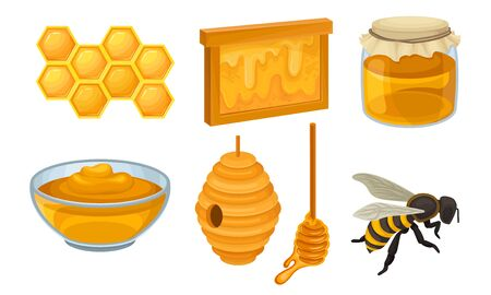 Honey Icon Set. Realistic Glossy Vector Collection Isolated On White Background. Organic Food Design Concept