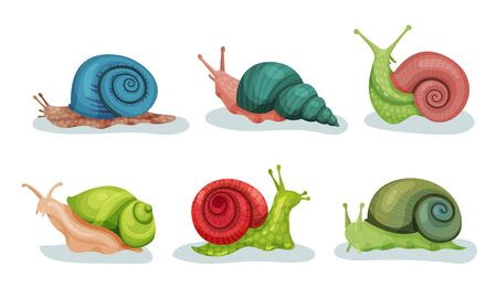 Lovely Snails Crawling In Different Directions Vector Illustrations. Small Cute Animals With Slow Movements Concept Banco de Imagens - 131852979