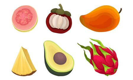 Exotic Tropical Fruit Vector Set Isolated On White Background. Collection Of Half Cut Colorful Fruit Icons Banco de Imagens - 131858096