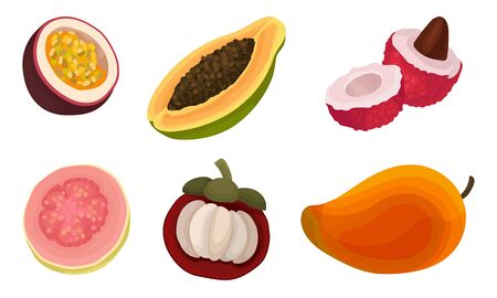 Exotic Tropical Fruit Vector Set Isolated On White Background. Collection Of Half Cut Colorful Fruit Icons Illustration