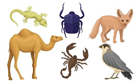 Desert Living Creatures Vector Illustrated Set Isolated On White Background