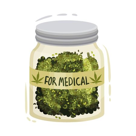 Dry Cannabis Plant In Jar For Medical Purpose Vector Illustrated Object