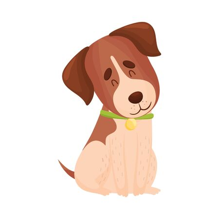 Cartoon beagle is sitting. Vector illustration on a white background.