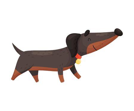 Cartoon dachshund. Vector illustration on a white background. Ilustração