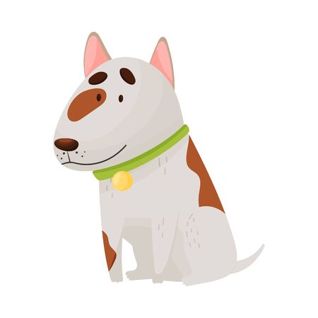 Cute bull terrier. Vector illustration on a white background.