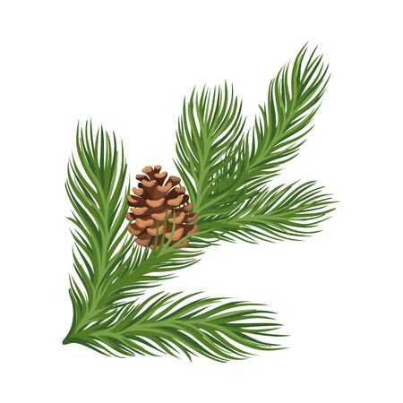 Lush green larch branch with a ripe open brown cone. Vector illustration.