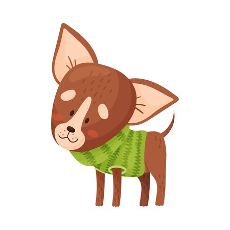 Cartoon chihuahua. Vector illustration on a white background.