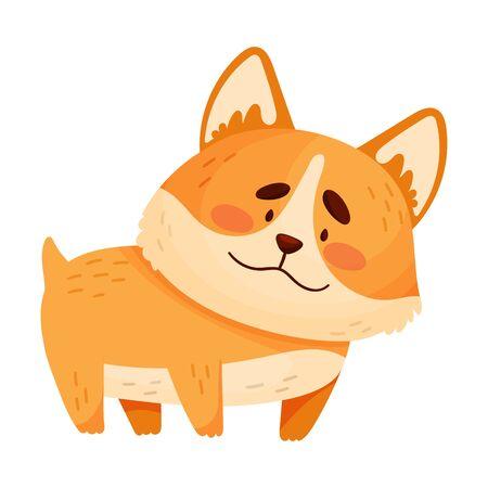 Cute orange corgi. Vector illustration on a white background. Ilustração