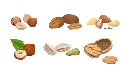 Different Nuts Set Isolated On White Background