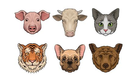 Set of realistic heads of pig, cow, cat, tiger, dog, bear Vector illustration