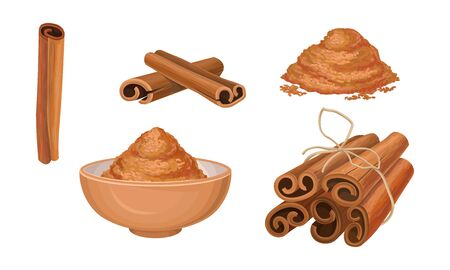 Cinnamon Sticks Vector Set. Pile of Milled Seeds and Seeds Poured in Bowl. Bakery Condiment Collection Concept