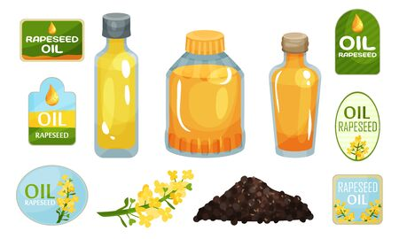 Vegetarian Rapeseed Oil Bottles Vector Set. Different Glassware With Raw Edible Liquid.