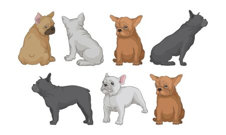 Funny Bulldog In Different Poses Vector Illustrated Set Illustration
