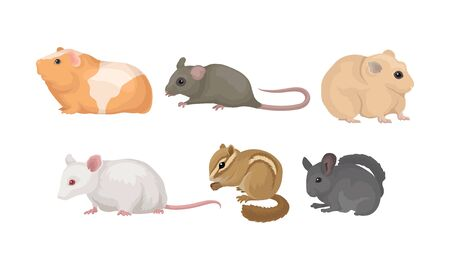 Small Gnawing Animals Vector Set Isolated On White Background Vettoriali