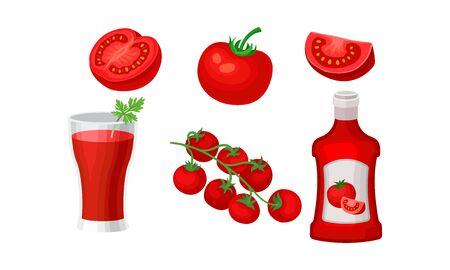 Tomatoes and products from them. Vector illustration on a white background.