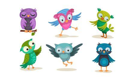 Set of humanized violet, green, pink, blue owls. Vector illustration on a white background.