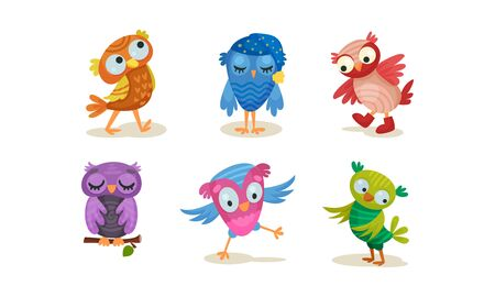 Set of cartoon violet, green, pink, blue, blue, red owls in a nightcap and boots. Vector illustration on a white background.