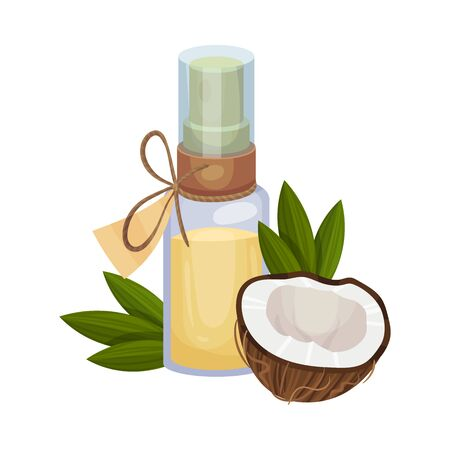 Bio Coconut Oil Bottle and Cross Cut Nut Vector Illustration Isolated On White Background