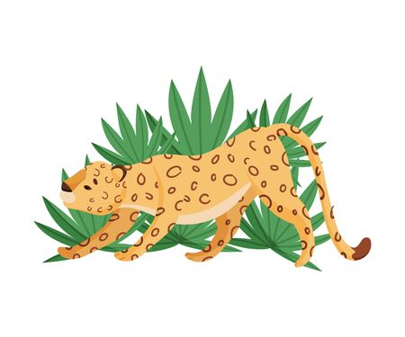 Spotted Leopard Stretching Near Tropical Leaves Vector Illustration 일러스트
