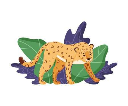 Spotted Leopard Standing Near Tropical Leaves Vector Illustration