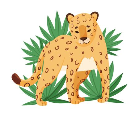 Spotted Leopard Stop Dead Looking Ahead Near Tropical Leaves Vector Illustration